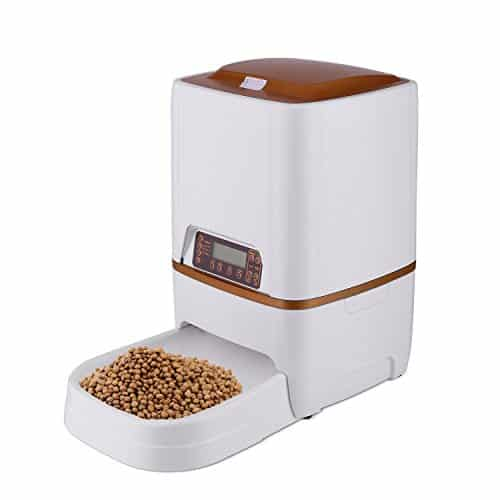 Best Automatic Pet Feeders for Cats and Dogs
