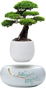 Levitating Mini Plant Pot